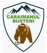 Caraimanul badge